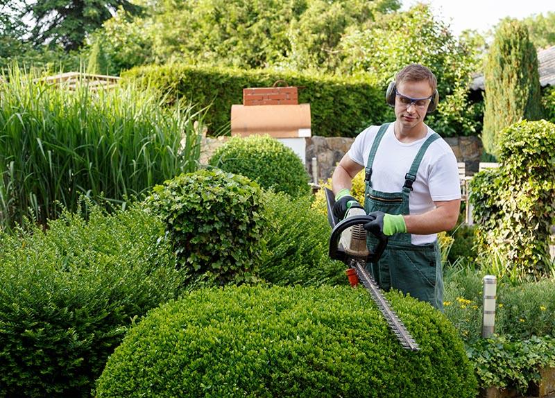 GARTENBAU SCHUMACHER ist Ihr Partner für Gartenpflege und Gartengestaltung